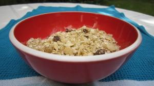 Gluten-free, oat-free granola